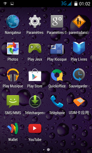 Screenshot 2010-01-01-01-02-25